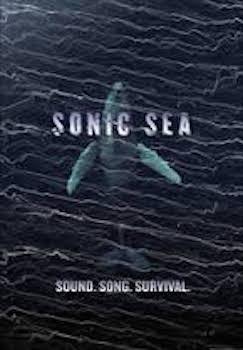 Sonic-sea