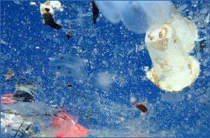 plástico-en-oceanos