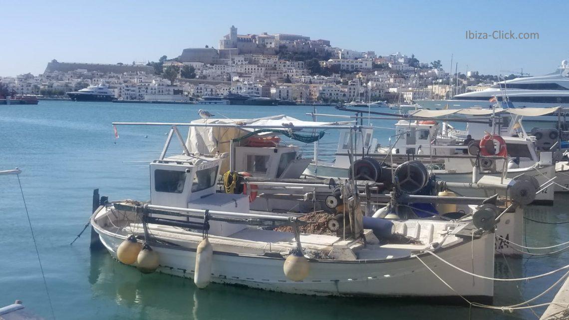 moll_pesquer_Ibiza-Klick
